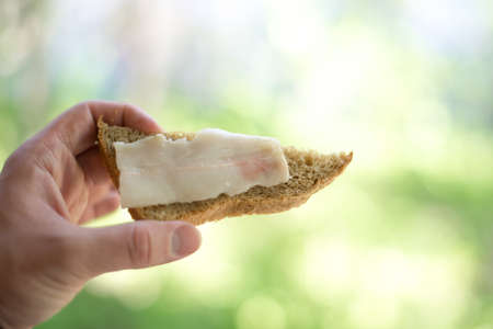 sandwich with salted lard in hand on a green background