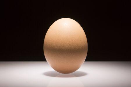 spotlight: Spotlight egg