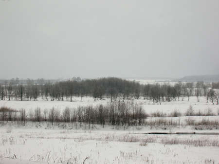 On this photo you can see a winter landscape. photo