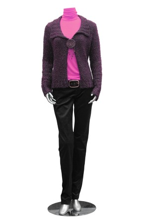 jacket, blouse, trousers on mannequin isolated on white Stock Photo - 4483100