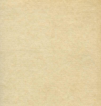 papel artesanal: Con textura de papel reciclado con piezas de fibra natural Foto de archivo
