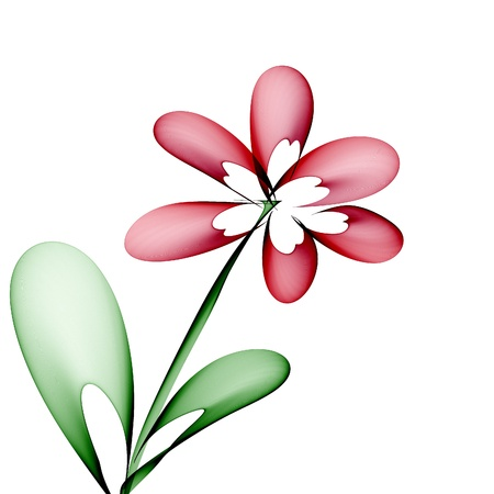 Abstract generated painted flower over white background photo