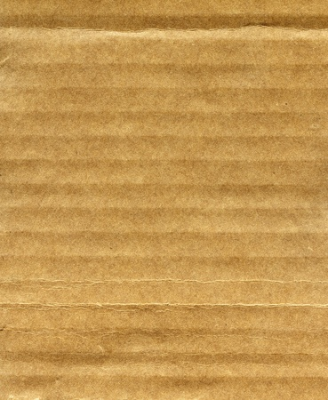 Textured recycled cardboard with natural fiber parts photo