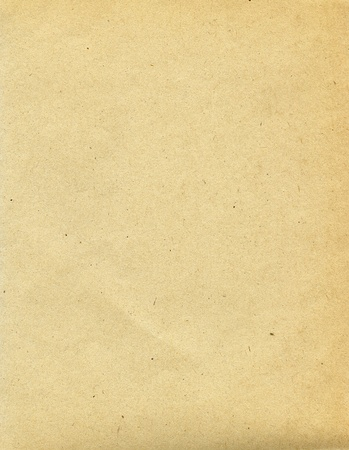 Textured recycled paper with natural fiber parts Stock Photo - 12854322