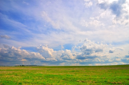 Spring landscape with wonderful cloudy sky and green grass Stock Photo - 13229844