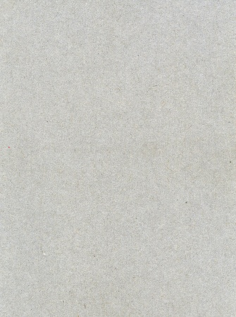 grainy: Textured grainy recycled paper with natural fiber parts