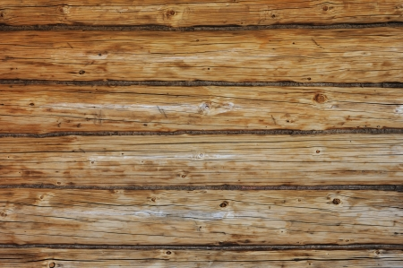 Weathered wooden logs with natural pattern background photo