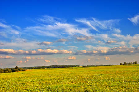 Summer rural landscape with cloudy sky, dry grass and trees                     Stock Photo - 13992897