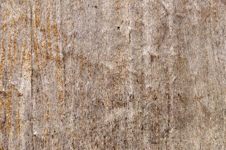 Weathered obsolete rough textured old plywood background photo