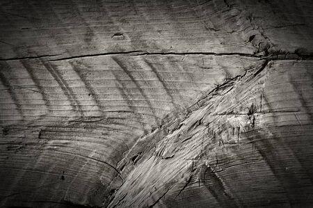 obsolete: Weathered obsolete rough textured wooden grunge background