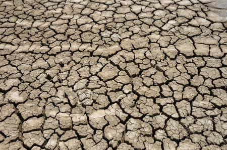 aridness: Cracked textured dry ground nature surface background