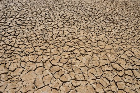barrenness: Cracked textured dry ground nature surface background