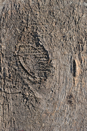 obsolete: Weathered obsolete rough textured wooden background Stock Photo