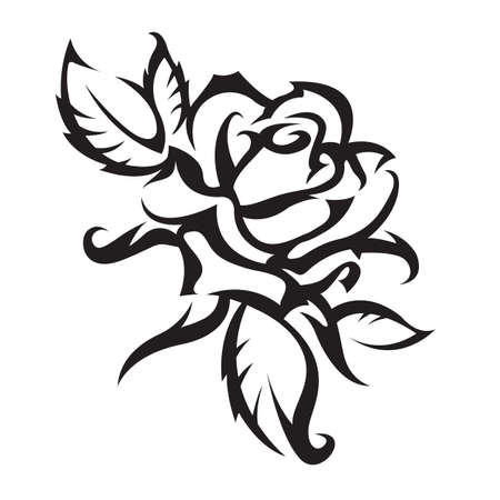 black roses: rose