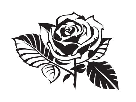 rosas negras: rosa Vectores