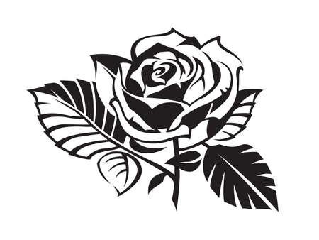 black and white plant: rose