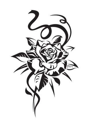 rose Stock Vector - 11650460