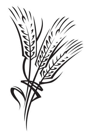 grain fields: wheat Illustration