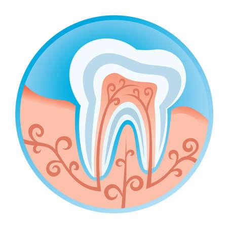 dental healthcare: icono dental