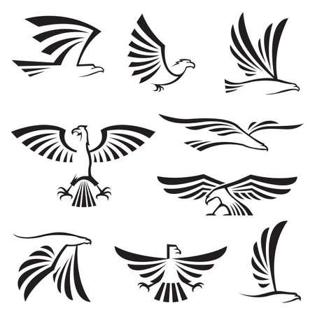adler silhouette: Satz von neun Adler Symbole