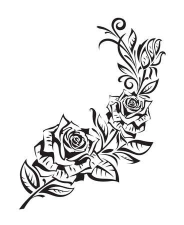 róża: czarny krzew róży na białym tle