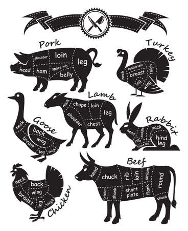 monochrome diagram guide for cutting meat