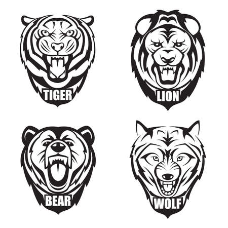 heads of bear, wolf, tiger and lion 일러스트