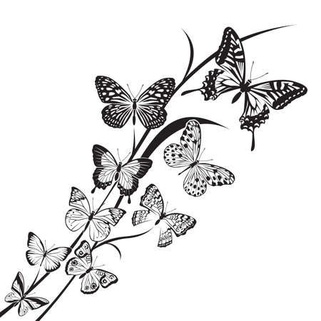 monochrome butterflies design on floral background Vector