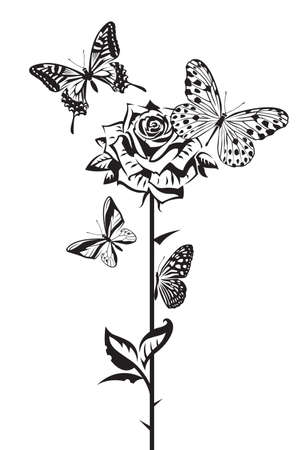 monochrome design of butterflies and rose Vector