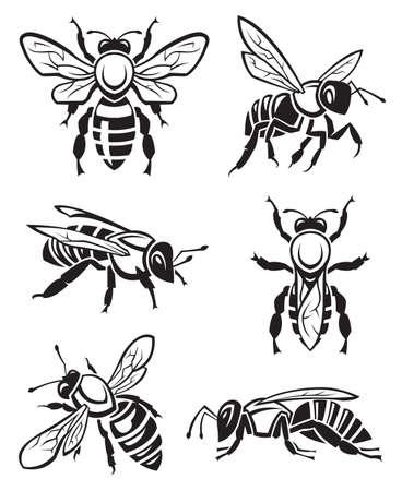 abejas panal: dise�o monocrom�tico de seis abejas
