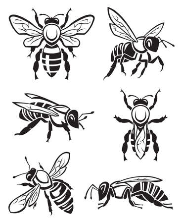 honeybee: monochrome design of six bees