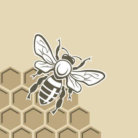 Dessin monochrome avec abeille et nid d'abeille Banque d'images - 33980760