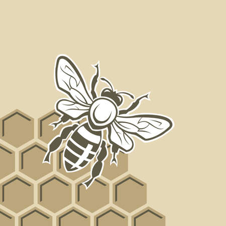 zwart-wit ontwerp met bijen en honingraat
