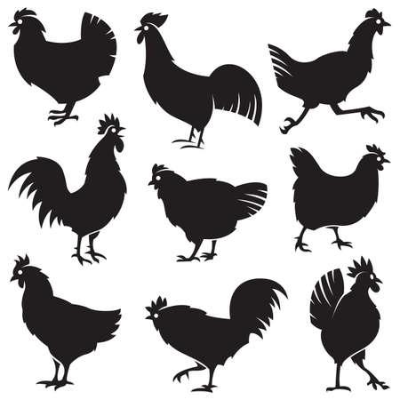 animal cock: in bianco e nero insieme di diverse sagome di polli Vettoriali