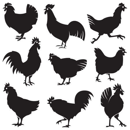 rooster: monochrome set of different silhouettes of chickens