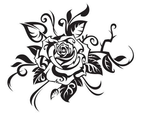 rose isolated: black rose on white background