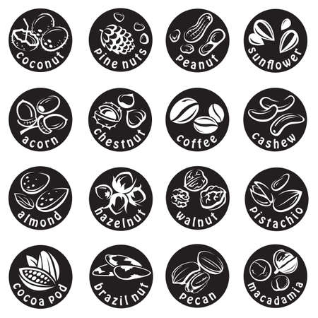 hazelnuts: set of sixteen monochrome nuts icons