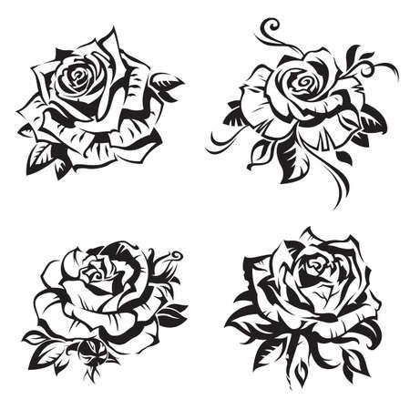 black rose set on white background Illustration