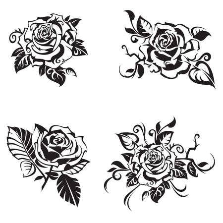 black rose set on white background  イラスト・ベクター素材