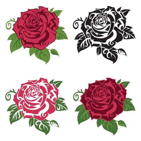 colección de rosas multicolores con hojas