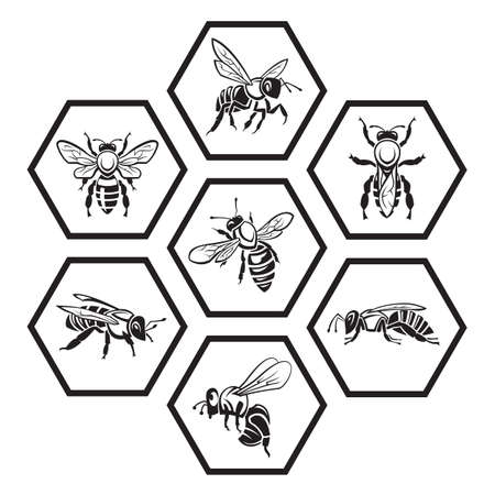 monochrome set of icons with bees