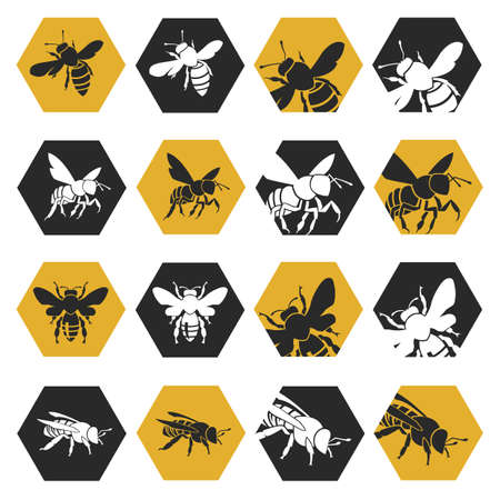 honeybee: collection with silhouettes of bees on honeycomb background