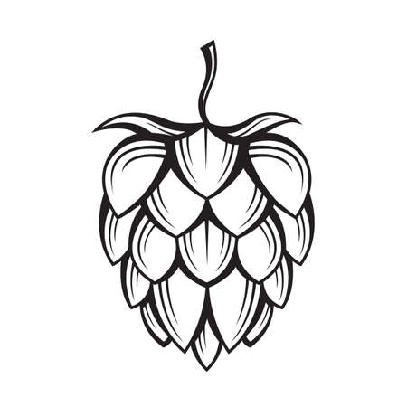 black illustration of hop for brewing Reklamní fotografie - 67808222