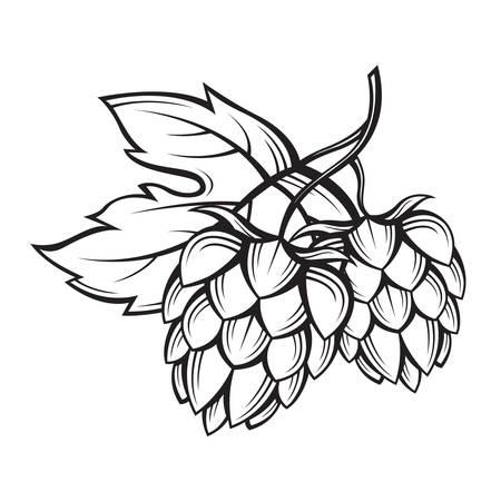 black illustration of hops for brewing