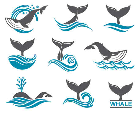drops of water: collection with abstract symbols of whale and sea wave Illustration