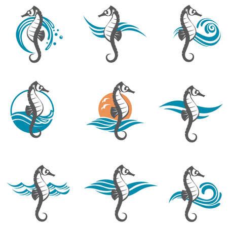 olas de mar: imágenes conjunto de ondas caballo de mar y océano