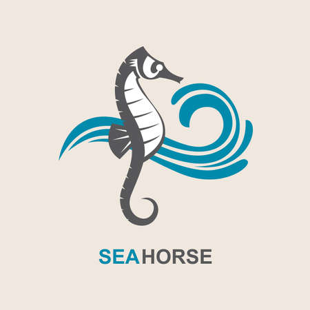 seahorse: image of sea horse and ocean waves