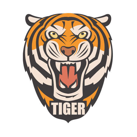 image of angry tiger head Illustration
