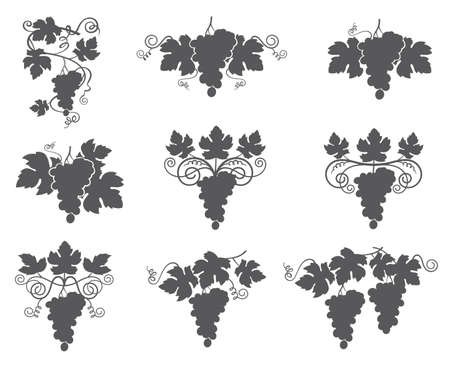 fruit: Collection of grapes silhouette with bunches and leaves