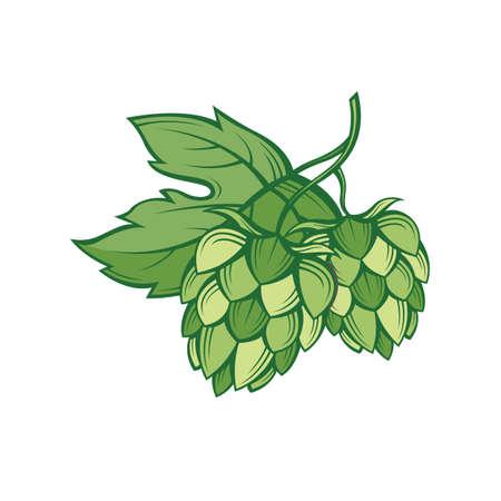 illustratie van de hop voor het brouwen Stock Illustratie